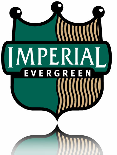 Imperial Evergreen